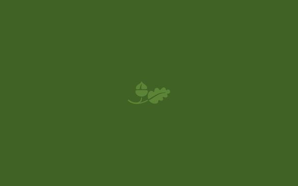 Simple Acorn
