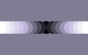 Grey Lavender